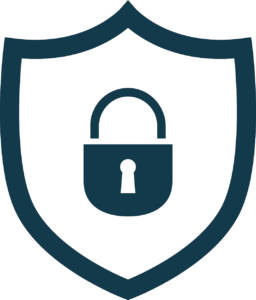 Site Security Icon